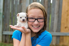Kid girl with puppy pet chihuahua playing happy Royalty Free Stock Images