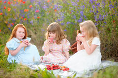 Kid girls eat vegetarian food at the picnic on summer field Stock Photography