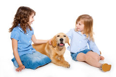 Kid girls with Golden retriever puppy isolated Royalty Free Stock Photo