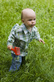 Kid in grass Royalty Free Stock Photo