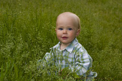 Kid in grass Stock Photo