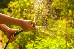 Kid hands hold hose with squirting water on the summer sunny green garden. Background royalty free stock photos