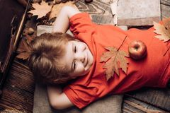 Kid having fun with Leaf fall. Smiling little boy wearing in fashionable seasonal clothes having Autumnal mood. Kid royalty free stock image
