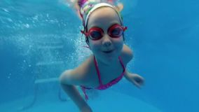 The child dives under the water in the pool. Kid having fun in swimming pool. Underwater portrait of child. Summer vacation stock footage