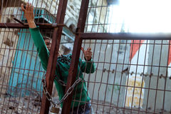 Kid in Hebron. Trying to open gates between Israel and Palestine teritory Royalty Free Stock Photo