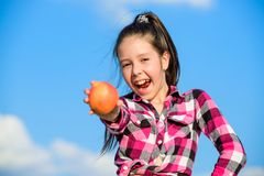 Kid hold ripe apple sunny day. Kid girl with long hair eat apple blue sky background. Healthy nutrition concept. Child. Eat ripe apple fall harvest. Fruit royalty free stock images