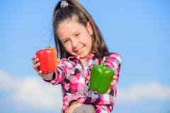 Kid hold ripe pepper harvest. Choose which. Kid girl hold red and green peppers sky background. Alternative decision. Concept. Child presenting kinds of pepper royalty free stock image