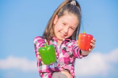 Kid hold ripe pepper harvest. Choose which. Kid girl hold red and green peppers sky background. Alternative decision. Concept. Child presenting kinds of pepper stock photography