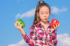 Kid hold ripe pepper harvest. Fall harvest homegrown vegetables. Vegetarian concept. Which pepper would you pick. Kid. Girl hold red and green peppers sky royalty free stock images