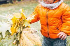 Kid in hold yellow leaves in his hands stock photos