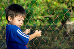 Kid holding the fence outdoor. Relaxing boy looking and holding the fence Royalty Free Stock Photo