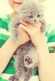 Kid holding  kitten Royalty Free Stock Photography