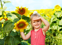 Kid holding sunflower outdoor. Stock Photo