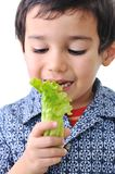 Kid holding vegetables Stock Photos