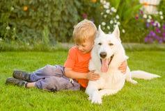 Kid hugging White Swiss Shepherd dog together on green grass Royalty Free Stock Photo