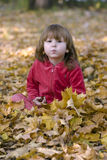 Kid in the leaves Stock Image