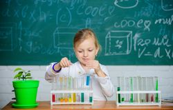 Kid like to experiment. Explore and investigate. School lesson. Girl cute pupil play with test tubes and colorful. Liquids. School chemical experiment. School royalty free stock photo