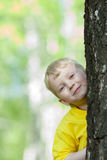 Kid looking from behind tree outdoor Royalty Free Stock Photography
