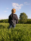 Kid on meadow stock photos