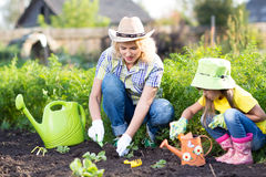 Kid with mother planting seedlings in garden Royalty Free Stock Photo