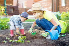Kid and mother planting strawberry seedling into fertile soil outside in garden Royalty Free Stock Photo