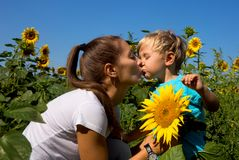 Kid mum in sunflowers Stock Photo