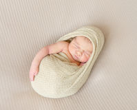 Kid napping wrapped, arm hanging out Stock Images