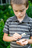 Kid observing snails Royalty Free Stock Photos