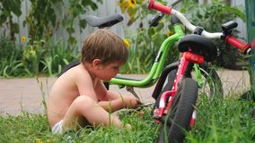 Boy fixing bicycle. Front, back yard background. Transport and children. Cycle on the grass. Happy childhood concept. Kid opening multi tool while sitting near stock footage