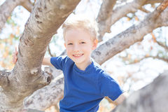 Kid in park Royalty Free Stock Photo