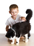 Kid pats a cat Stock Photo