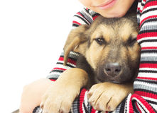 Kid and pet. On a white background Royalty Free Stock Images