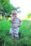 Kid picking his nose Royalty Free Stock Photography