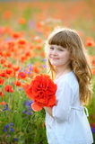 Kid picking wild flowers in field. Girl play in a meadow and pic Royalty Free Stock Images