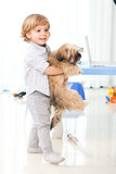 Kid play dog Stock Photos