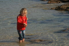 Kid playing. A white caucasian girl child playing in the water at the beach Stock Image