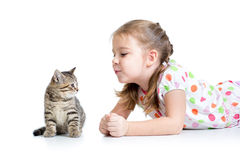 Kid playing with cat kitten Stock Photo