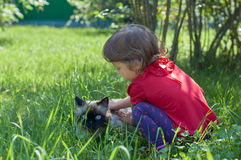 Kid playing with a cat Royalty Free Stock Photography