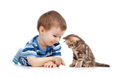 Kid playing with cat pet. In studio Royalty Free Stock Photography
