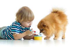 Kid playing with dog and feeding his with toy spoon Royalty Free Stock Photos