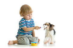 Kid playing with dog and feeding his with toy spoon Royalty Free Stock Images