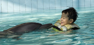 Kid playing with Dolphin. A kid playing with dolphin in swimming pool. A human can live with animal peacefully royalty free stock photos