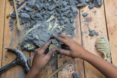 Educational archaeology toy. Kid playing with educational archaeology toy with dinosaur fossil stock image