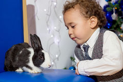 Kid playing with a rabbit. Royalty Free Stock Image