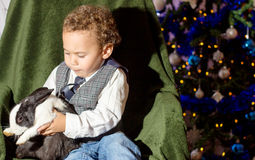 Kid playing with a rabbit. Royalty Free Stock Photo