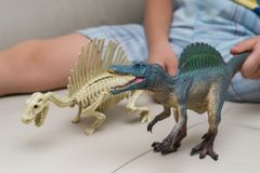Kid playing a Spinosaurus toy and Spinosaurus skeleton on a sofa Royalty Free Stock Photography