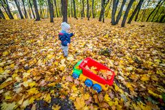 Kid playing with toy car in autumn. Child in autumn nature playing with toy car and yellow golden leaves royalty free stock photo