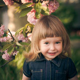 Kid portrait Stock Images