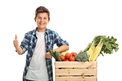 Kid posing next to a crate Royalty Free Stock Photography