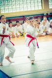 Kid practicing karate Royalty Free Stock Image